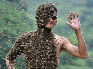 Скафизм: пытка насекомыми
