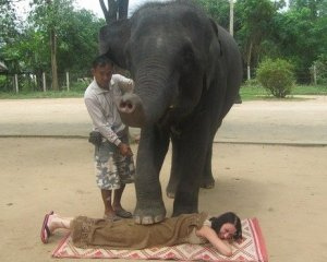 Раздавливание слонами