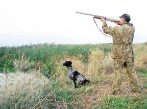 Что следует знать об охоте?