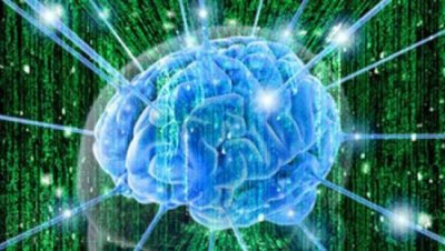 Мозг активен после смерти