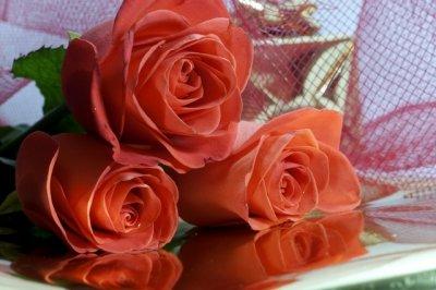 Огромный выбор цветов на женский день